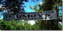 banner_umoys[1]