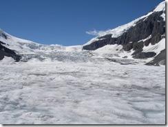Columbia Icefields 015
